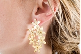 Picture of GARDEN EARRINGS