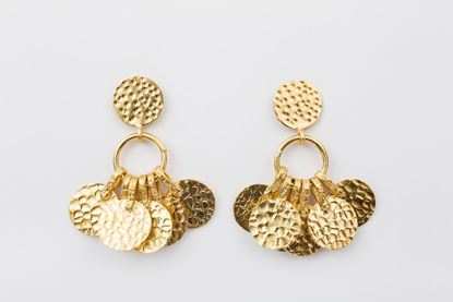 Picture of MULTICOIN EARRING